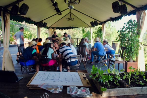 Captain Lettuce_Amfivia_Team Events_Barcelona_Outdoor (14)