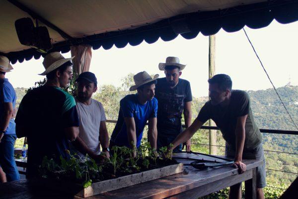 Captain Lettuce_Amfivia_Team Events_Barcelona_Outdoor (16)