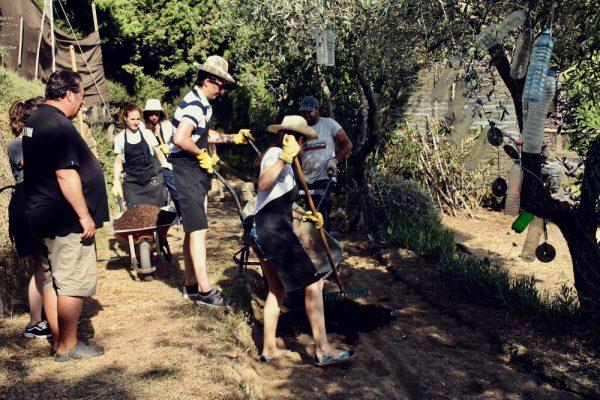 Captain Lettuce_Amfivia_Team Events_Barcelona_Outdoor (18)