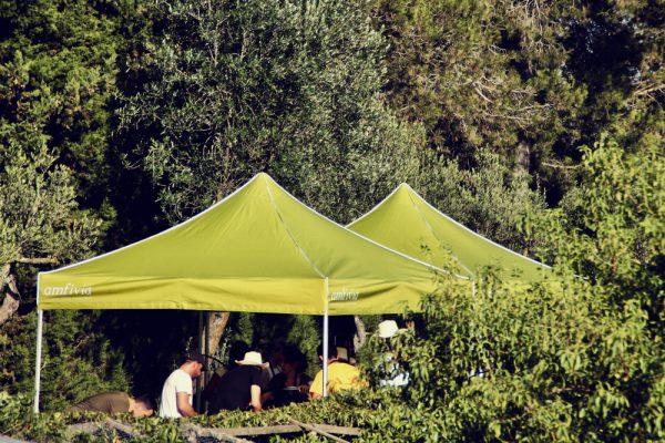 Captain Lettuce_Amfivia_Team Events_Barcelona_Outdoor (4)
