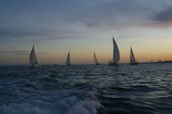Amfivia Regatta Teambuilding Sailing Barcelona (11)_opt
