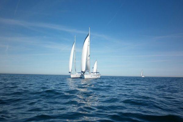 Amfivia Regatta Teambuilding Sailing Barcelona_opt