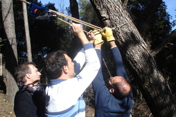 Amfivia Zipline Workshop Adventure Teambuilding Barcelona (2)_opt