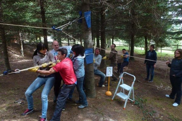 Amfivia Zipline Workshop Adventure Teambuilding Barcelona (3)_opt