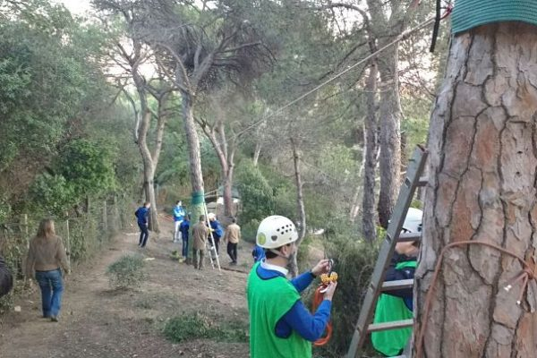 team building_barcelona_ adventure_nature_rope_teamwork 4