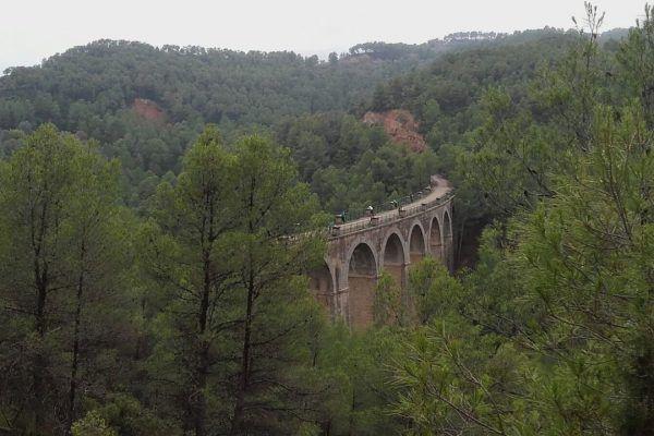 outdoortraining_-formacion-profesional_-nomadic_-journey_barcelona_consulting_leadership_training6_opt