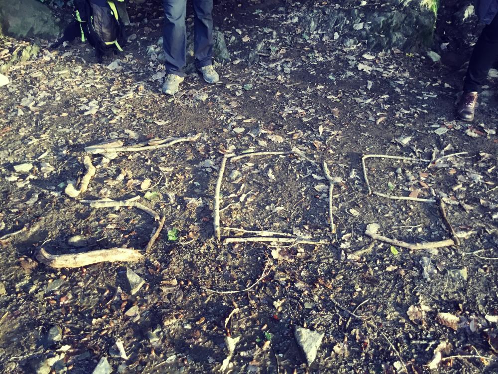 Orienteering challenge in Collserola: turn the forest into a playground!