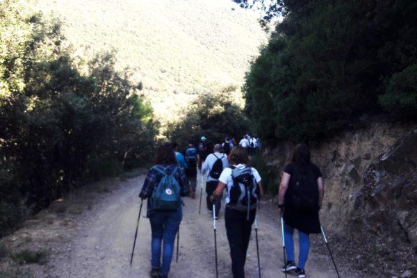 Teambuilding Barcelona Amfivia Nordic Walk (1)