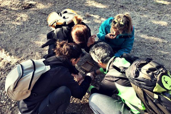Amfivia orienteering challenge team building barcelona (1)