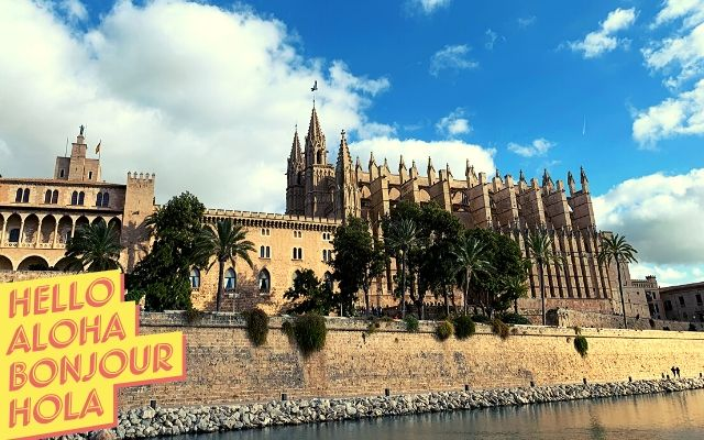TEAM BUILDING PALMA DE MALLORCA: NUEVO DESTINO PARA TECH HUNTERS